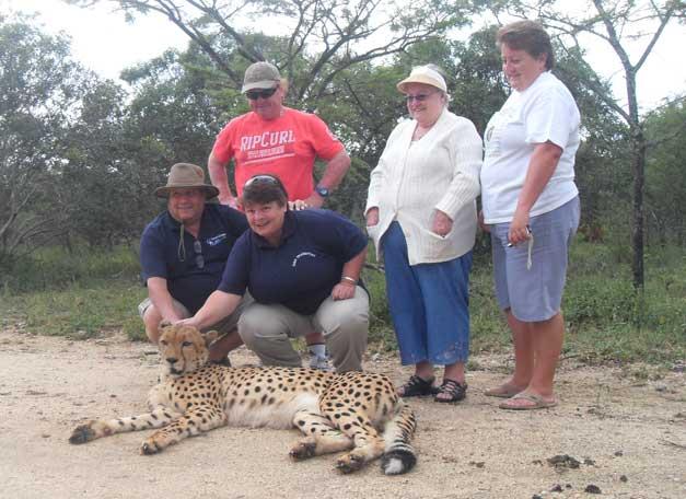HESC-Cheetah-adoption