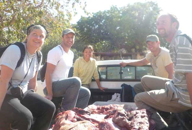 HESC-Students feeding the cheetahs