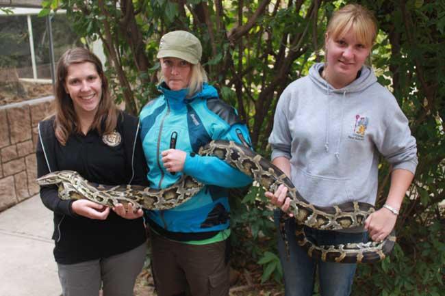 HESC-Khamai-Reptile-Park