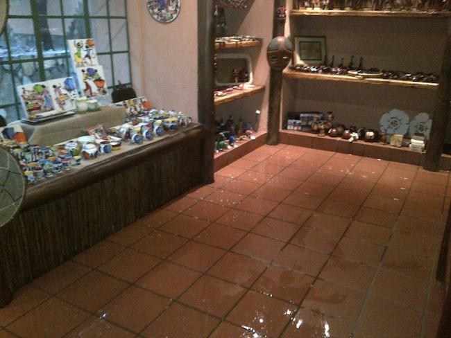 HESC Curio shop