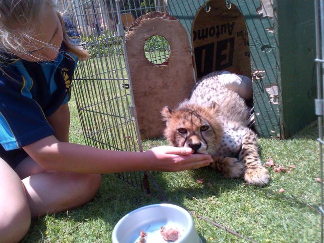 1 Pretoria-20120920-00752 blog