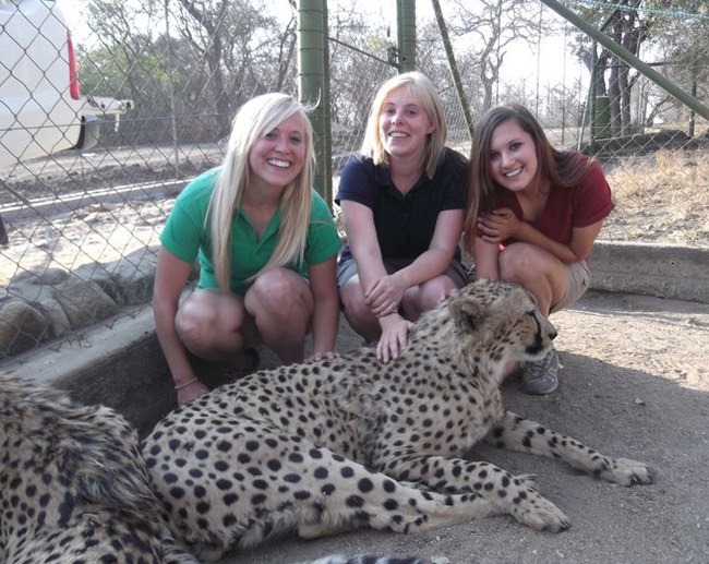 Chelsea, Sophie & Ashley with a cheetah