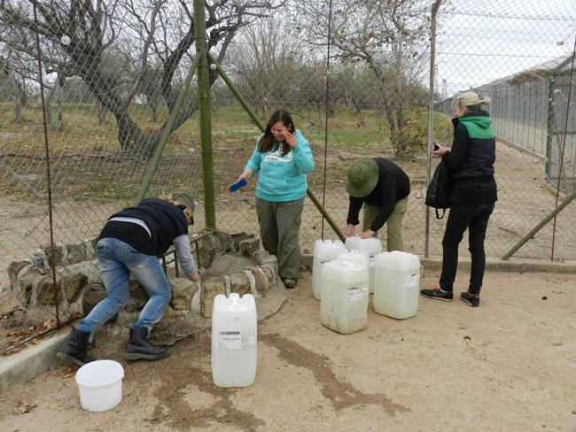 Students washing the lion dam