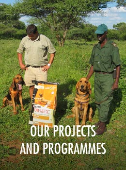 Our Projects and Programmes