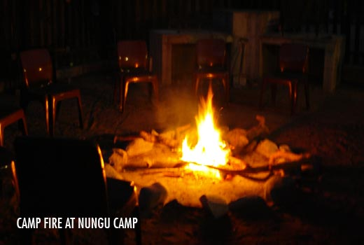 Nungu Camp Gallery
