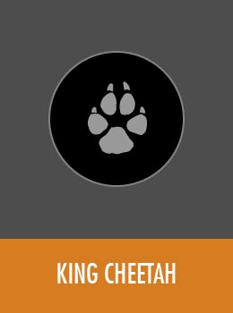 species-king-cheetah-tile