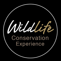 Wildlife Conservation Experience