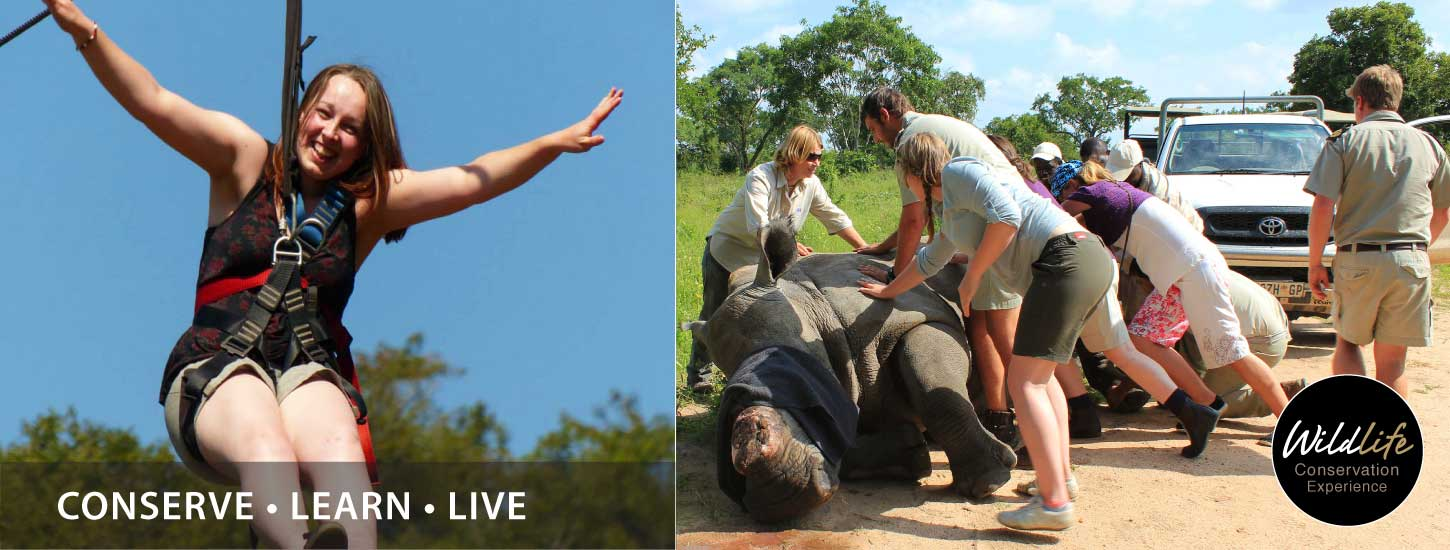 Hesc-Wildlife-Conservation-Experience