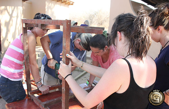 Volunteers-building-houses-for-the-servals-and-african-wildcats
