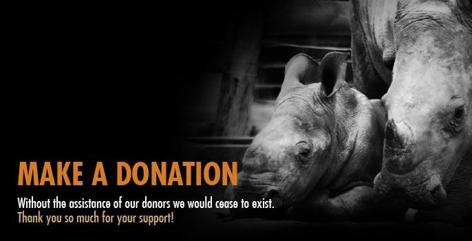 Help HESC Donate