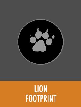 Lion   HESC