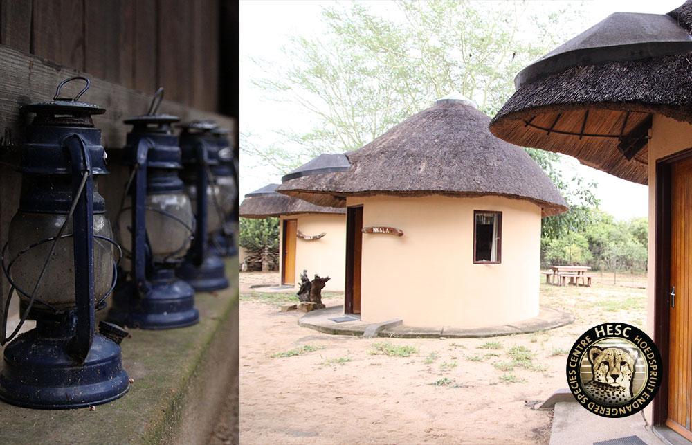Accomodation-at-Nungu-Camp