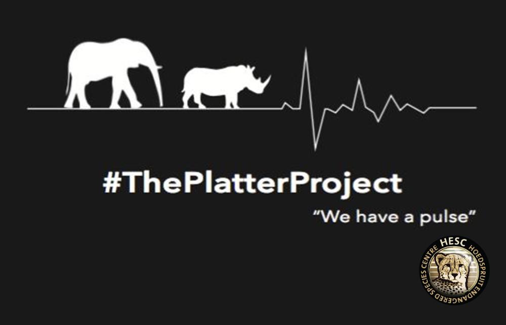 Platter-Project-Logo