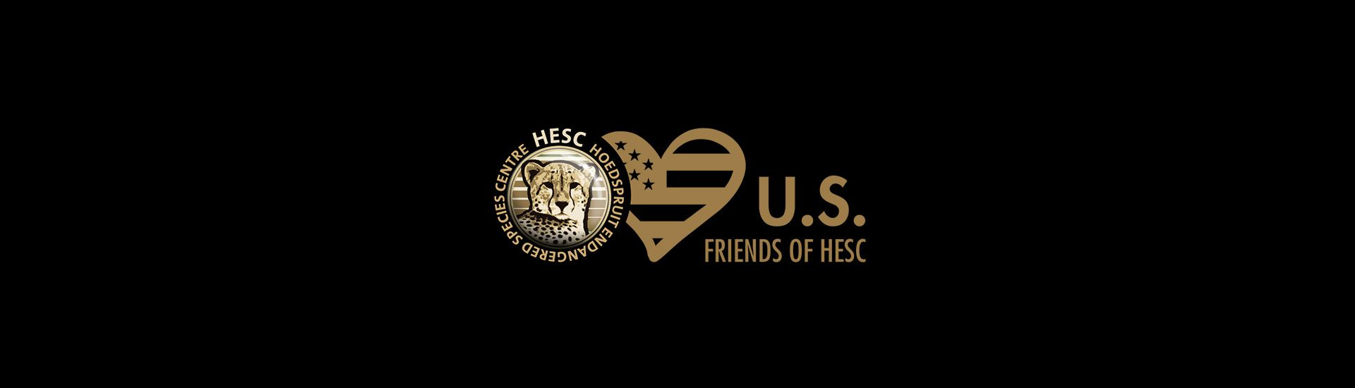 us-friends-of-hesc-banner