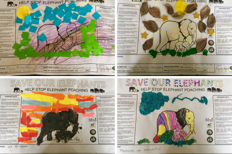 Elephant Art to raise funds for HESC