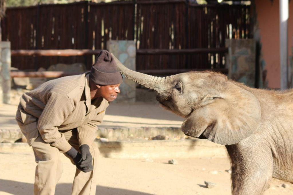 Mopane and Joshua playing
