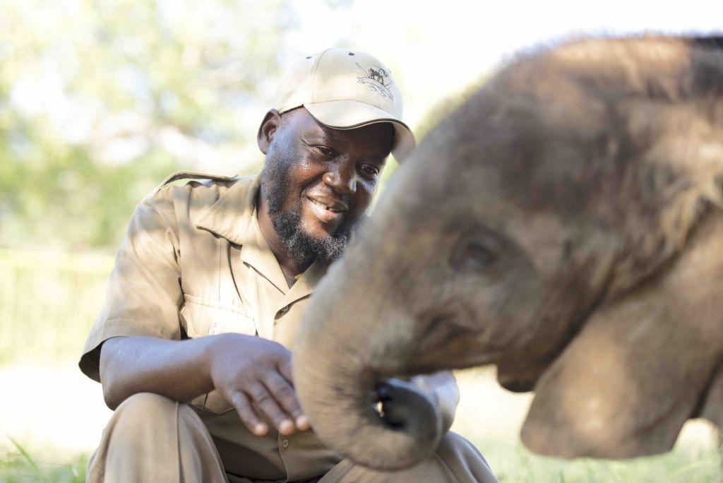 Israel with orphaned elephant Mopane