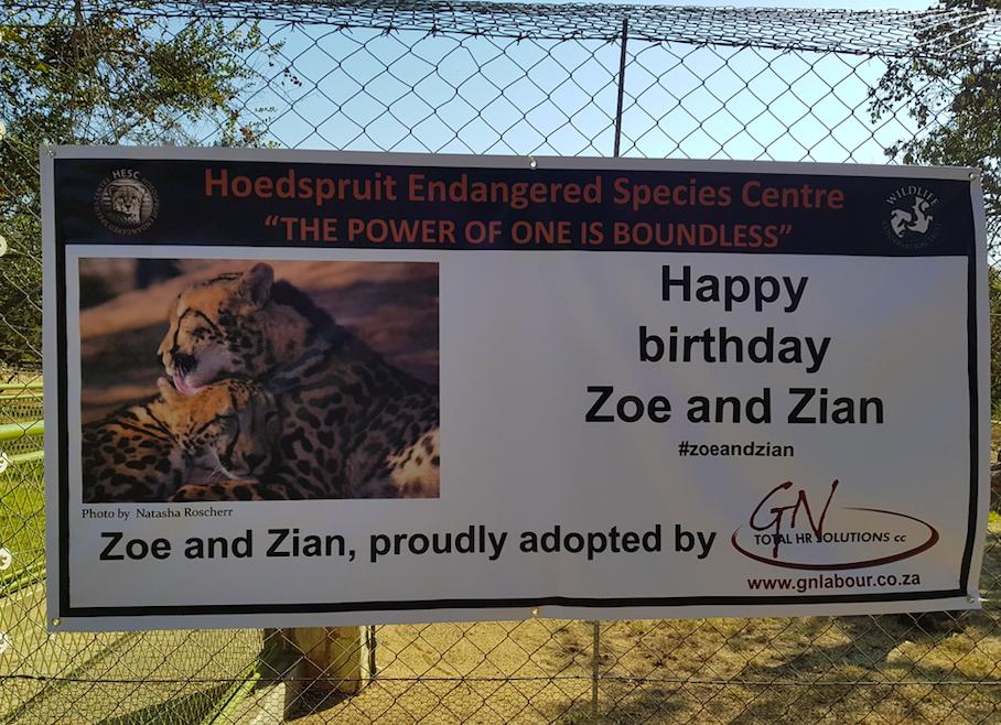 Winning photo of Zoe and Zian, by Natasha