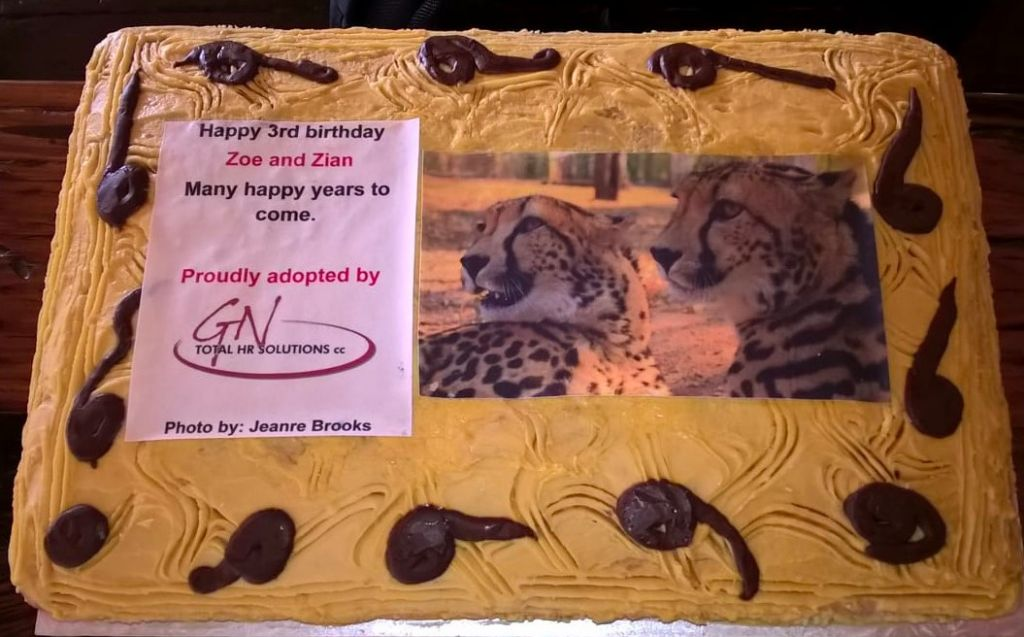 Birthday_Cake-Zoe and Zian