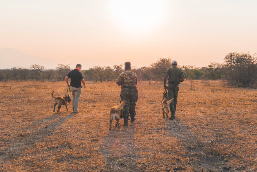 Anti-poaching_unit_in_training