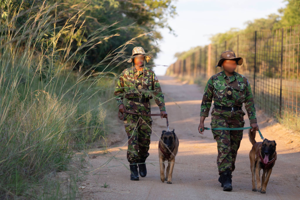 Patrolling our perimeters to keep our animals safe.